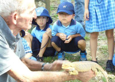 reptile park 10