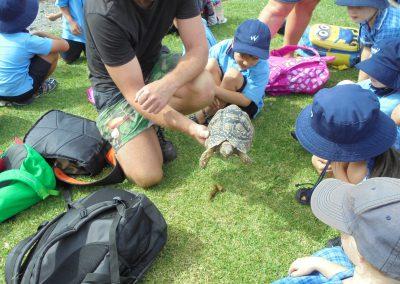 reptile park 16