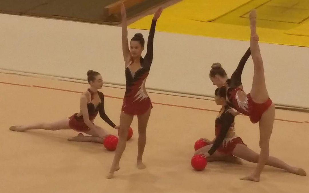 Wentworth Gymnasts win Gold and Silver medals at the Auckland Gymsports Championships