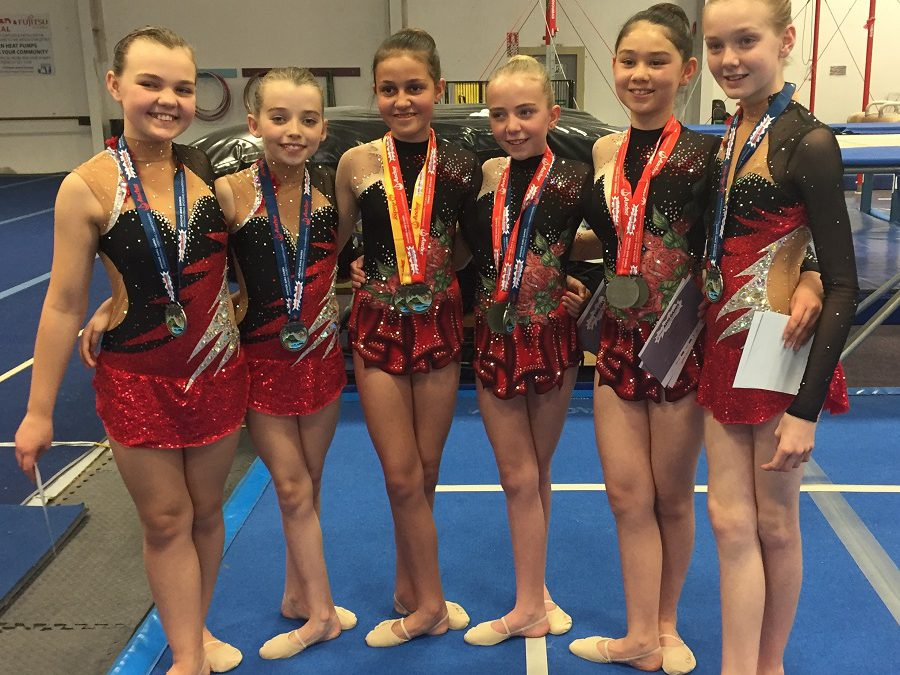 Wentworth Gymnasts Gold & Silver at AIMS!